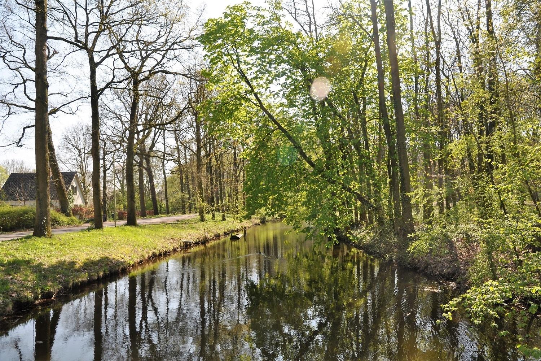 BOB leefomgeving groen, zicht op beek met bomenmet vijver
