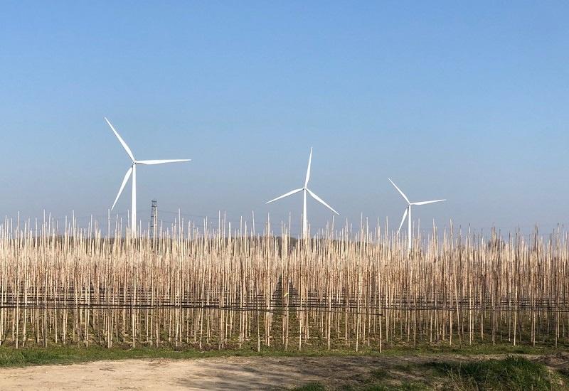 leefomgeving duurzaamheid zicht op windmolens